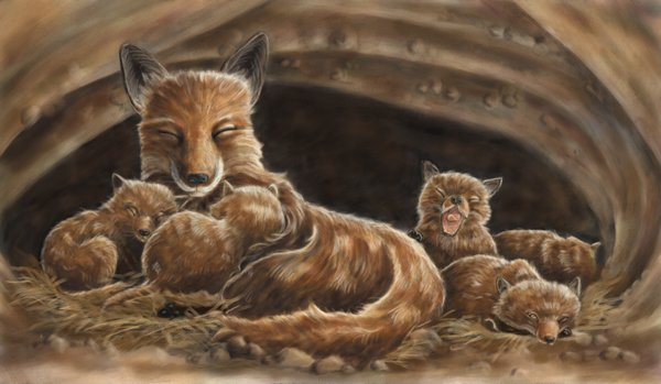 children's book illustration of sleeping fox family by Andrea Gabriel