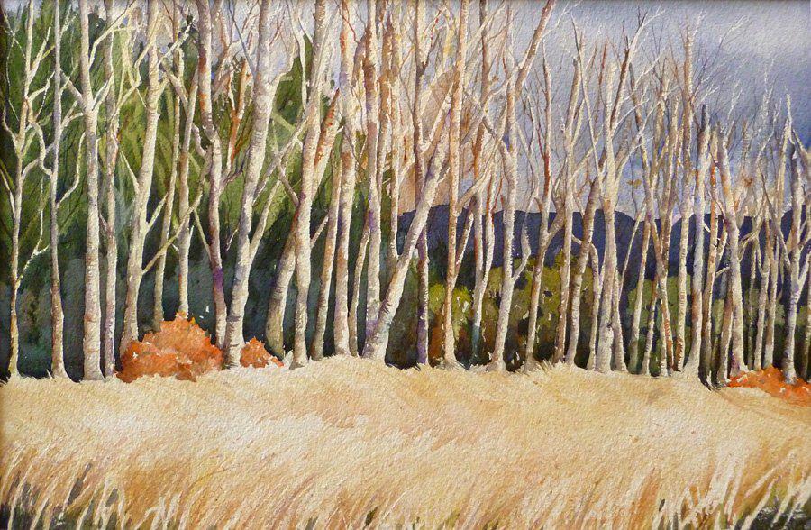 painting of trees at Lake Padden