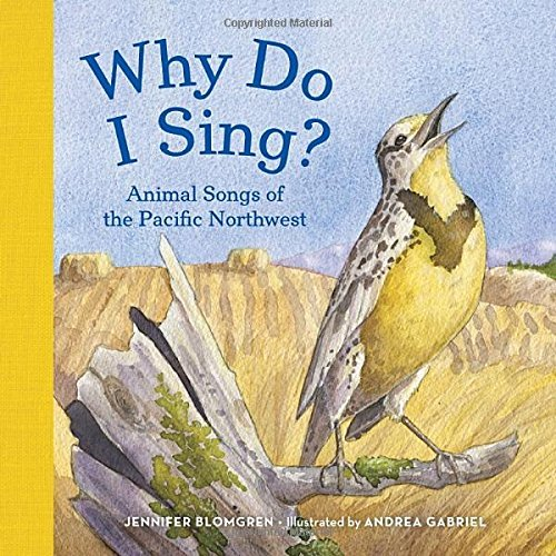 cover of Why Do I Sing? board book, featuring a singing meadowlark