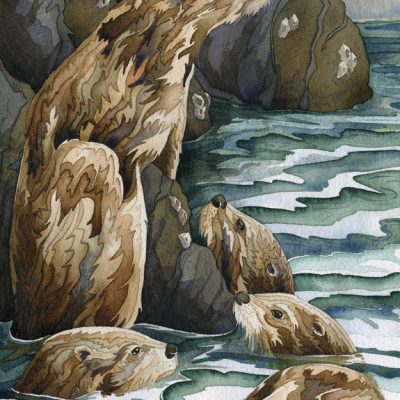 otter watercolor painting