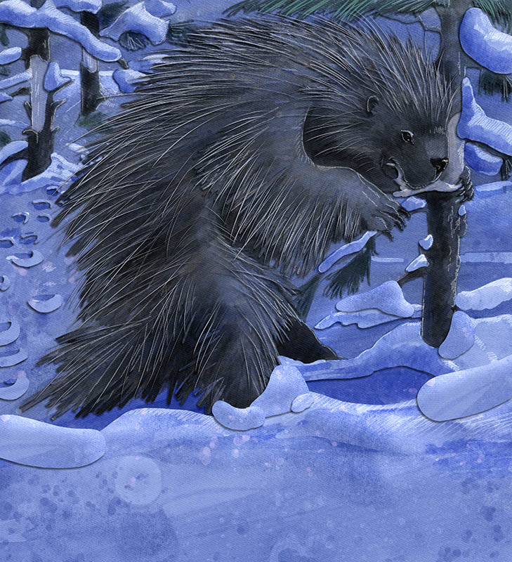 children's illustration of porcupine eating bark