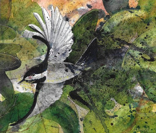 featured watercolor paintings for sale: a chickadee in flight