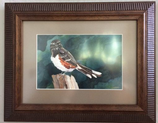 towhee painting in frame