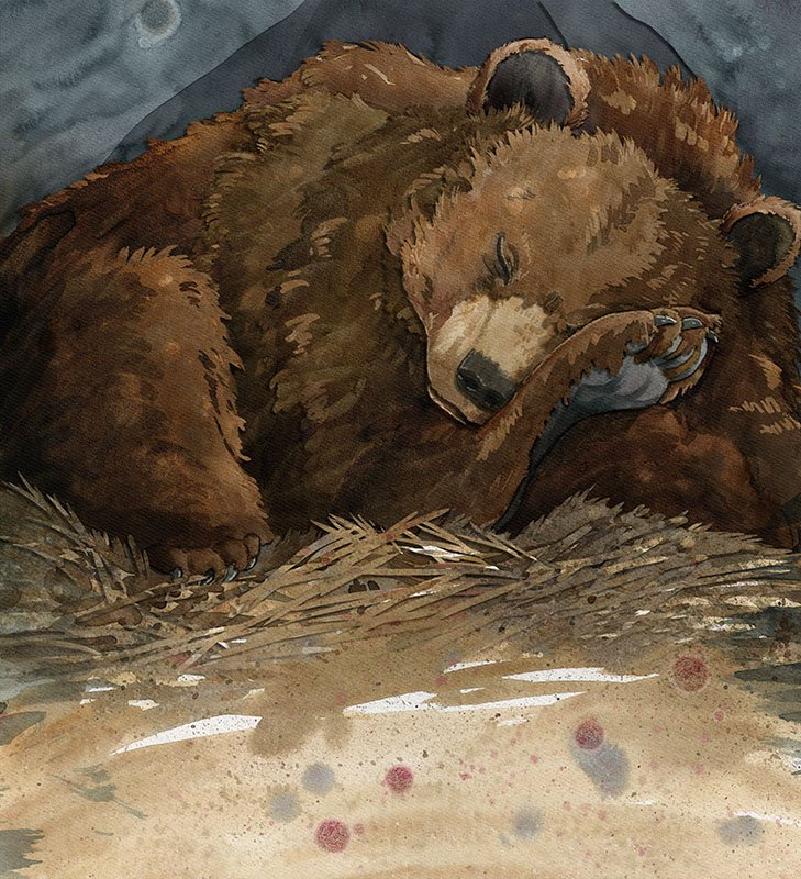 children's book illustration by Andrea Gabriel featuring a sleeping bear