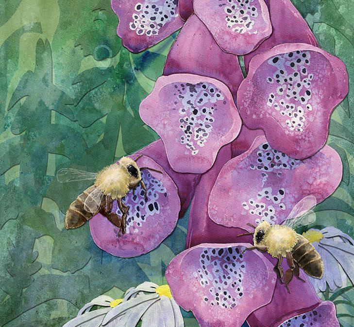Bees & Foxglove