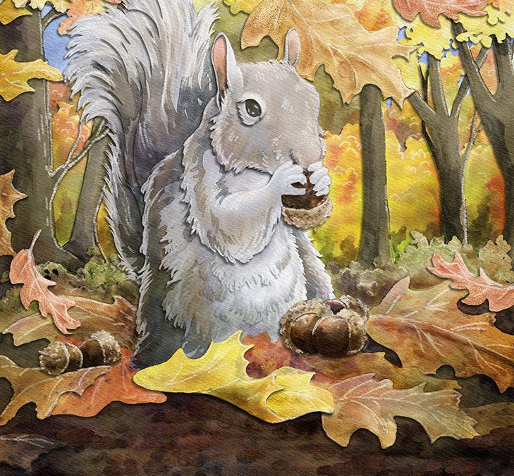 Squirrel Gathering Acorns