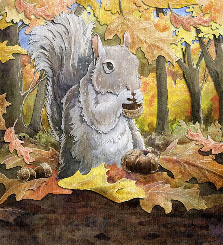 children's book illustration of squirrel gathering acorns