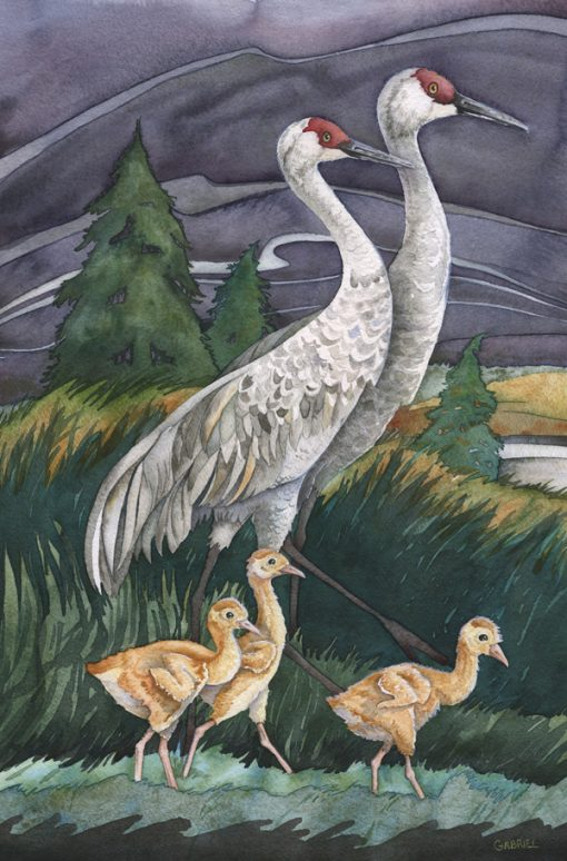 sandhill crane painting with sandhill babies and adults