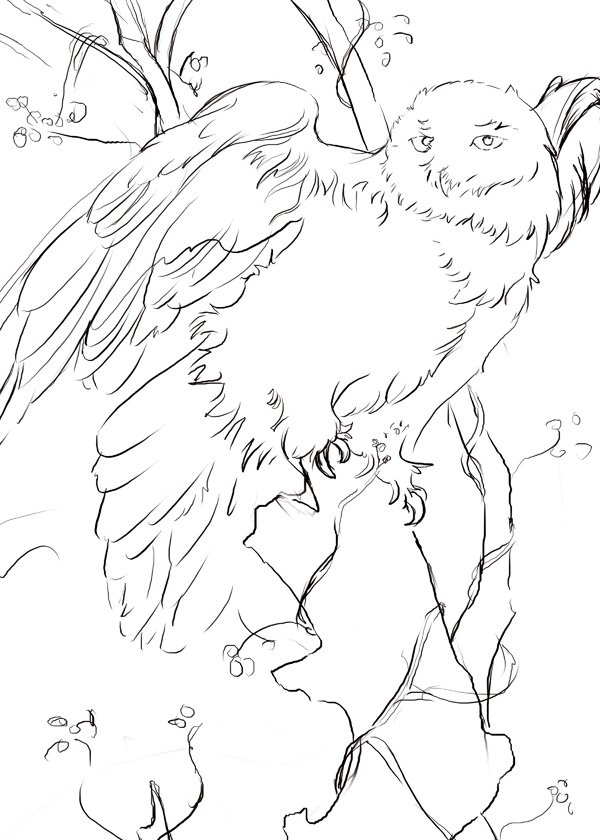 sketch for snowy owl painting