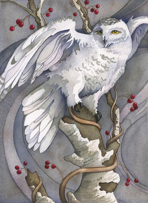 snowy owl watercolor painting