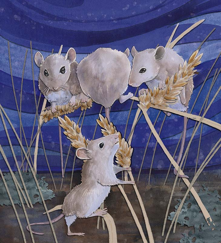 children's book illustration of mice gathering grass seeds