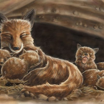 illustration of a napping fox family