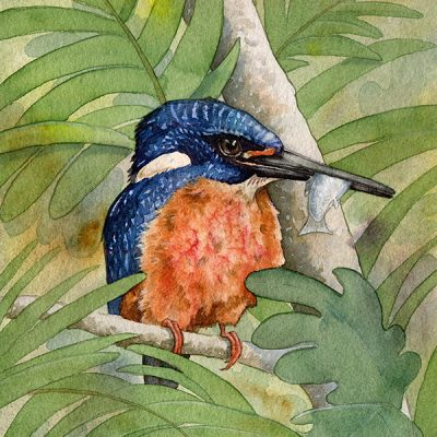 watercolor painting of blue-eared kingfisher